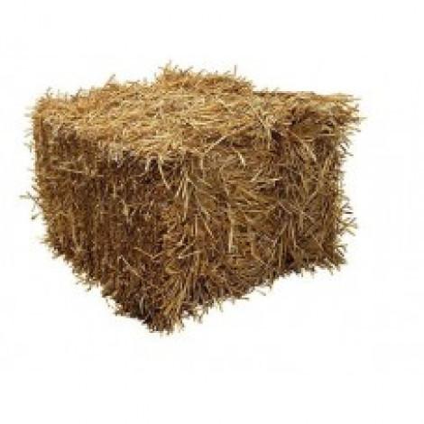Straw - Half Bale